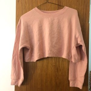 Zara NWT Cropped Long Sleeve Top Women's Sz M